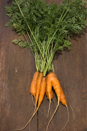 haulm: fresh ripe carrots on the vintage cut-board