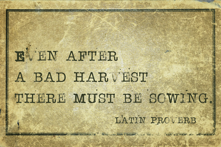harvest: Even after a bad harvest there must be sowing - ancient Latin proverb printed on grunge vintage cardboard