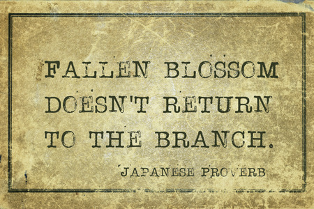 Fallen blossom doesnt return to the branch - ancient Japanese proverb printed on grunge vintage cardboard Stock Photo