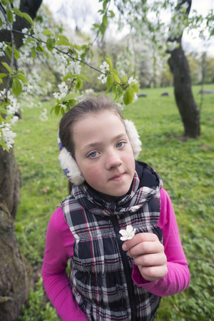 earmuff: teenage girl holding small blossom cherry tree flower by springtime