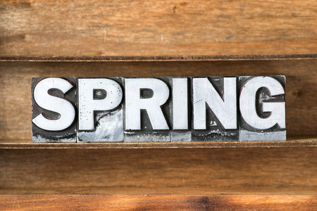 letterpress type: spring word made from metallic letterpress type on wooden tray