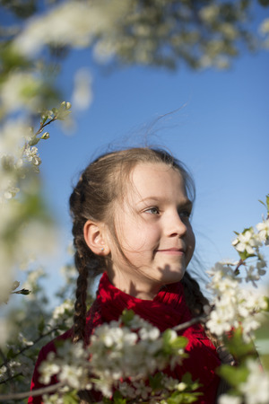 blossom time: happy girl in blossom cherry tree brunches by spring time
