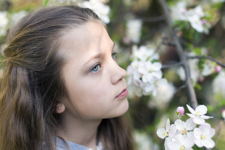 meditative: child girl between blossom tree branches in meditative mood by springtime