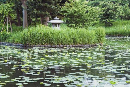 lotus lantern: Japanese pond by summer with traditional stone lantern in grass thicket Stock Photo