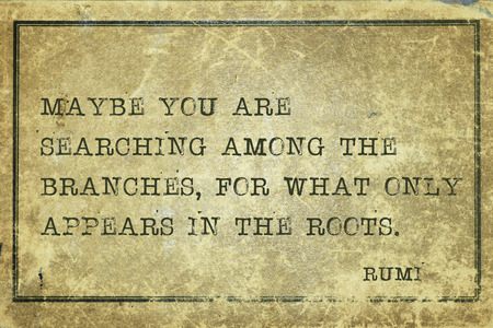 cardboard only: Maybe you are searching among the branches, for what only appears in the roots - ancient Persian poet and philosopher Rumi quote printed on grunge vintage cardboard Stock Photo