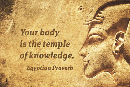 Your body is the temple of knowledge - ancient Egyptian Proverb citation