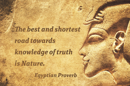 shortest: The best and shortest road towards knowledge of truth is Nature - ancient Egyptian Proverb citation
