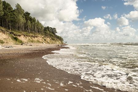 リトアニアの嵐バルト海の白いサーフコースト