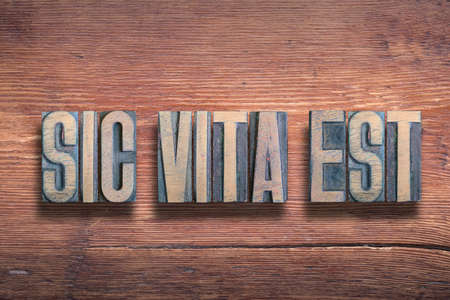 sic vita est ancient Latin saying meaning - thus is life, combined on vintage varnished wooden surface Stok Fotoğraf