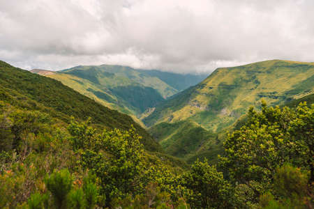 green mountain forest landscape from Madeira Island by cloudy day