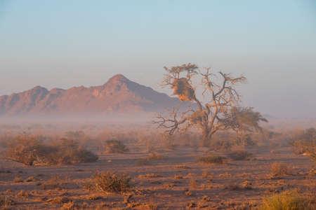 light fog in desert by morning in Namibia
