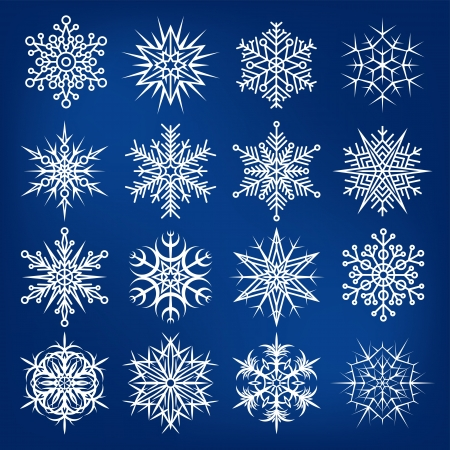 snow crystals: Set of beautiful various snowflakes.