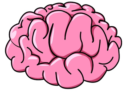 illustration human brain in profile cartoon Stock Vector - 9917578