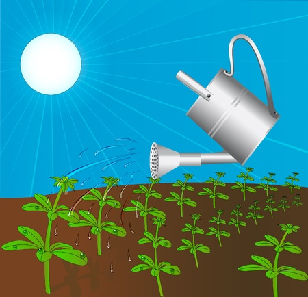 watering of plants: illustration sprinkling can waters plant solar daytime