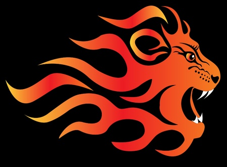 black and red cat:  illustration infuriated lion in fire on black  background