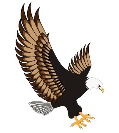 Ilustración flying eagle aislada sobre fondo blanco