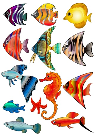 blue fish:  illustration kit fish is insulated on white background