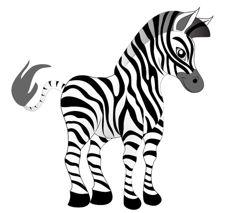 sripes: illustration making look younger nice zebra on white background