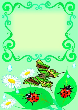 illustration frame with butterfly, color, sheet, ladybug and drop Vector