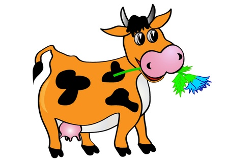 illustration cow with flower is insulated on white Stock Vector - 10567738