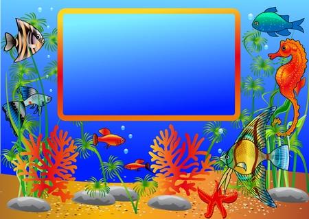 aquatic life:  illustration frame with undersea fish and algae