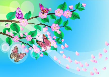 illustration background with flowering branch of the cherries and butterfly Stock Vector - 10621972
