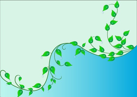 dewdrop:  illustration background with green sheet and dewdrop