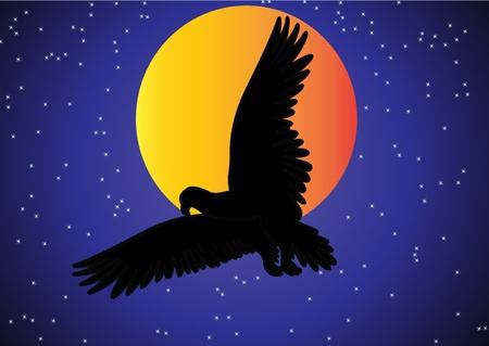 moody sky: l'aquila figura nel cielo sullo sfondo della luna e delle stelle. Vettoriali