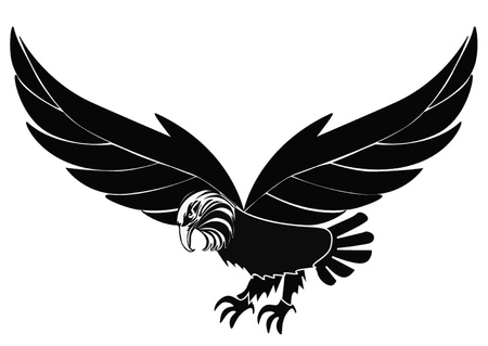 illustration silhouette birds eagle insulated on white  Vector