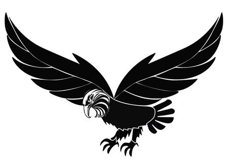 agression: silhouette illustration des oiseaux d'aigle isol� sur blanc Illustration