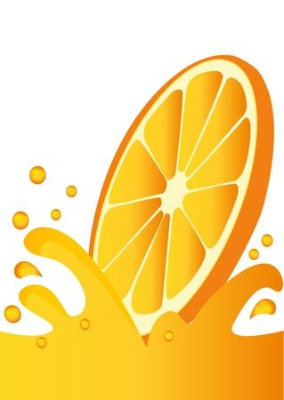 orange peel: illustration segment orange sunk in juice