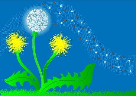 sporen: Illustration Hintergrund Blume L�wenzahn und fliegender fuzz