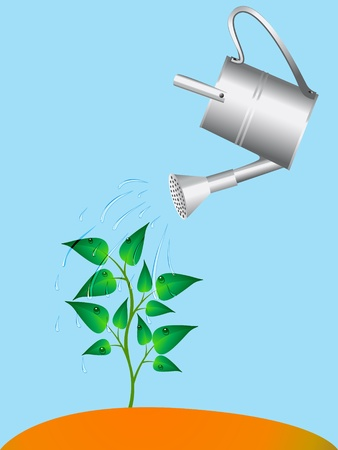 water plant: illustration plant is watered from sprinkling can drop water