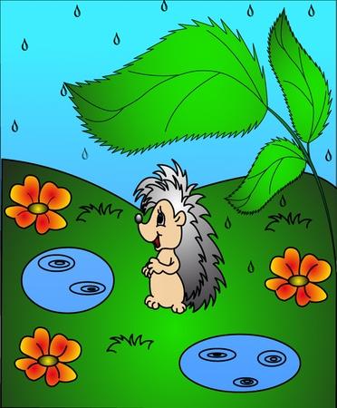 rainstorm: the hedgehog under sheet during rainstorm.  Illustration
