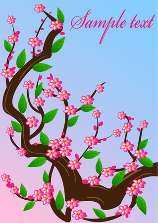 illustration background cherry blossom branches  Vector