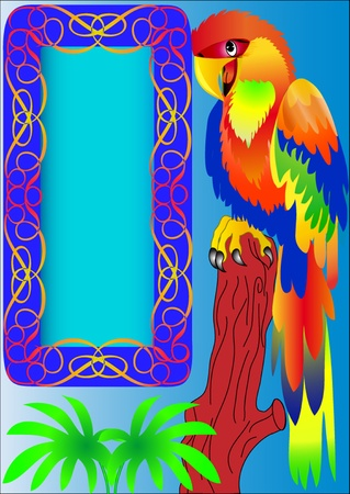 wildlife reserve: illustration frame and parrot sitting on tree