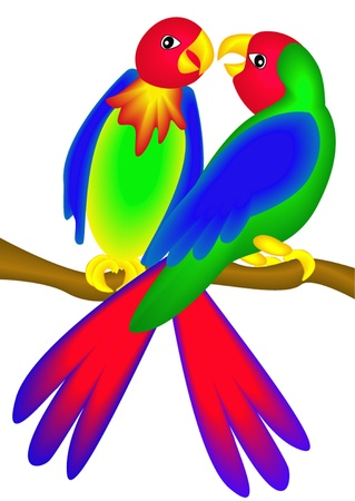 the two parrots: illustration bright parrot insulated on white background