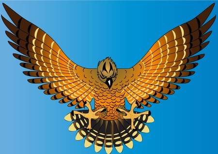 spread eagle: illustration flying powerful eagle on turn blue background