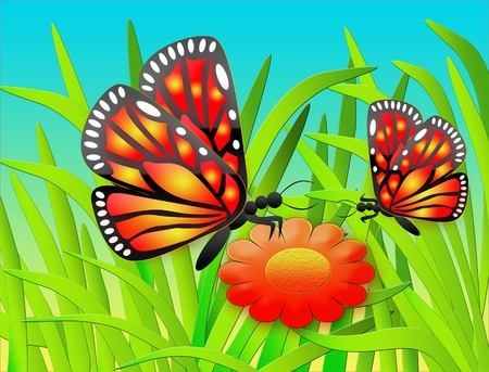 The Illustration two butterflies and flower in herb. illustration
