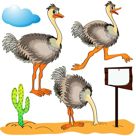Illustrazione struzzo corre, copre di sabbia testa e il costo (stand) s su sfondo cloud e cactus