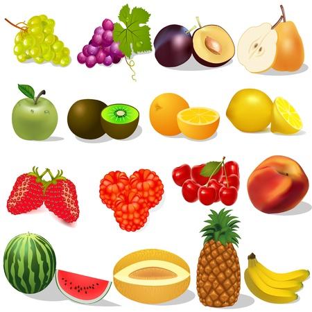 illustratie set rijp fruit en bessen op witte