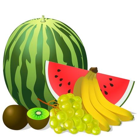 illustration still life fruits banana watermelon grape kiwi Stock Vector - 15071122