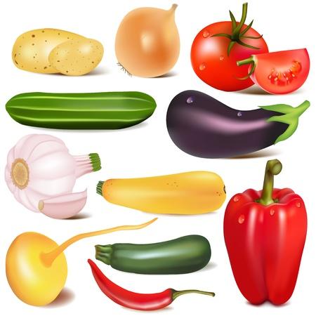 aubergine: illustration set Gem�se mit Gelenk durch turnip Auberginen Illustration