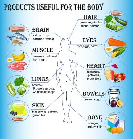 âhealthy: ilustración de productos útiles para el cuerpo humano