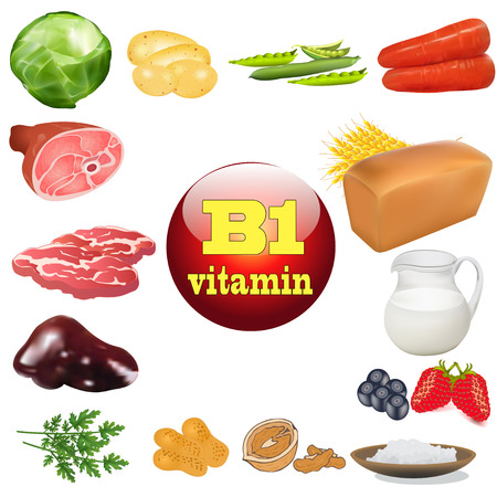 illustration vitamin b one in plant and animal products The origin of the Vector