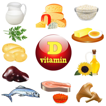 d: illustration vitamin d and plant and animal products