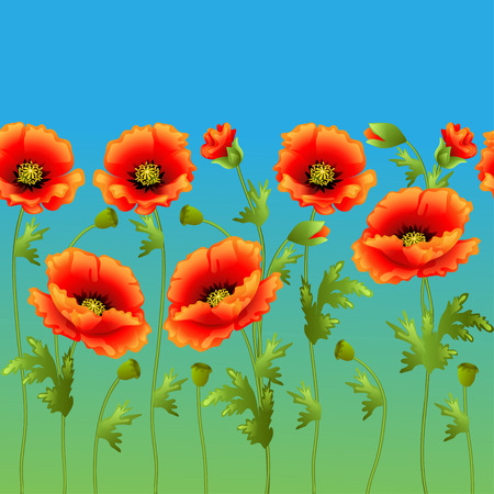 illustration bright background with flowers curb poppy packaging Vector