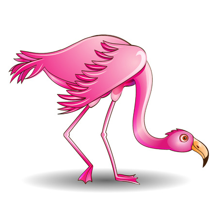 leaned: illustration of a pink flamingo leaned on a white background Illustration