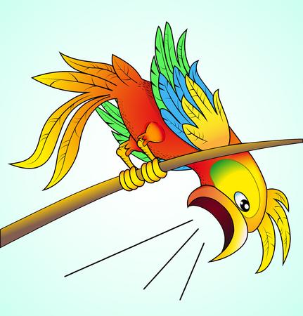 oiseau dessin: illustration perroquet lumineux hurle sur les nouvelles que son son inquiétude