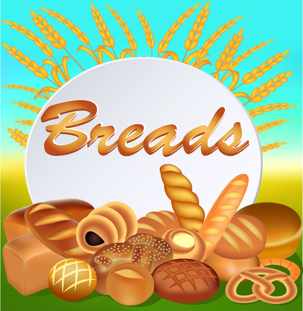 palatable: Illustration background with a set of different bread with ears and a text inscription bread
